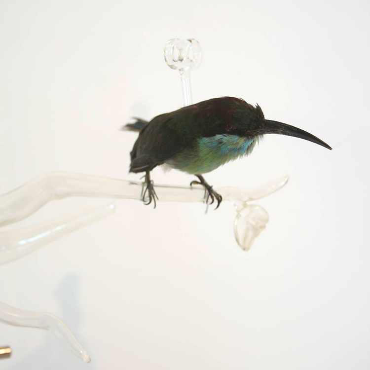 idiots (afke golsteijn, floris bakker), fake evolution IV, 2018, object, taxidermy bird, glass, iron